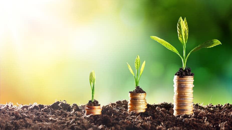 8 ideias de negócio de baixo custo